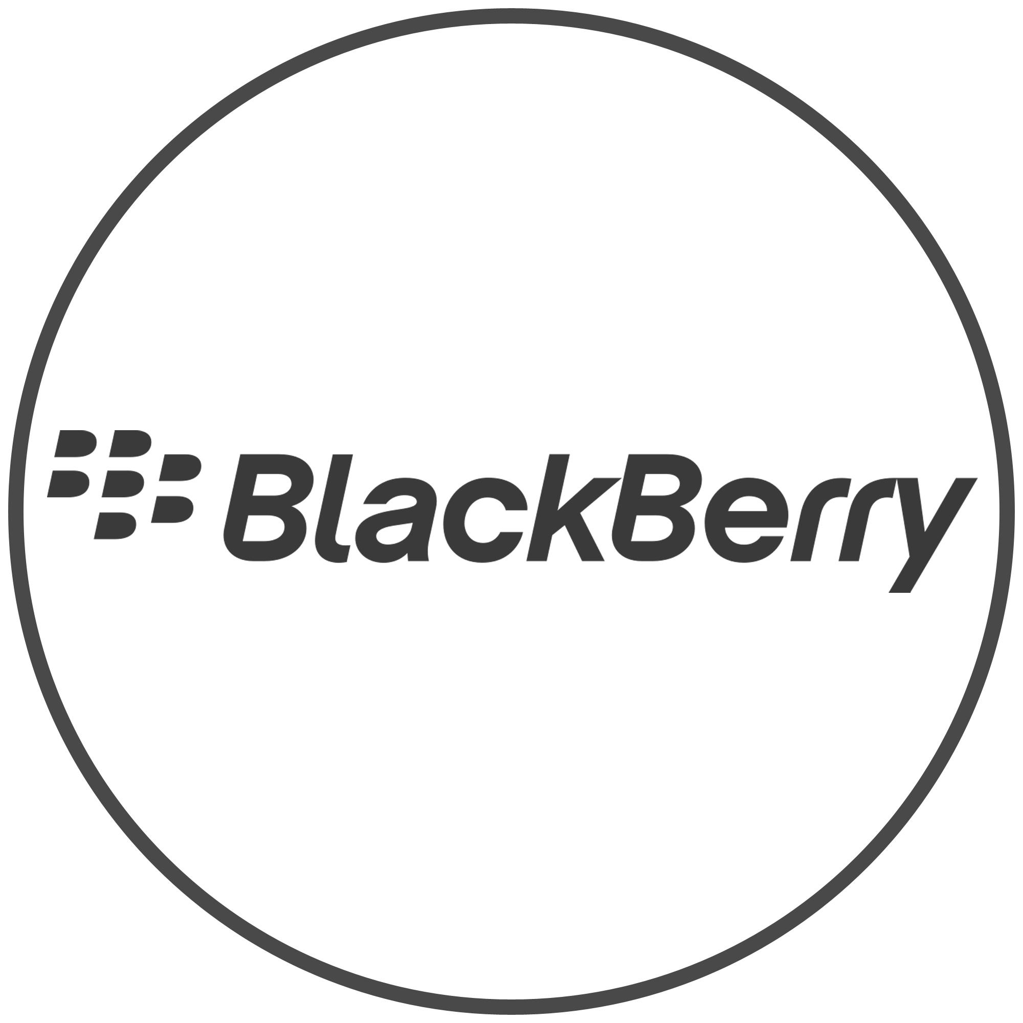 BLACKBERRY ACCESORIOS