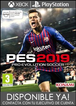 BANNER PES19